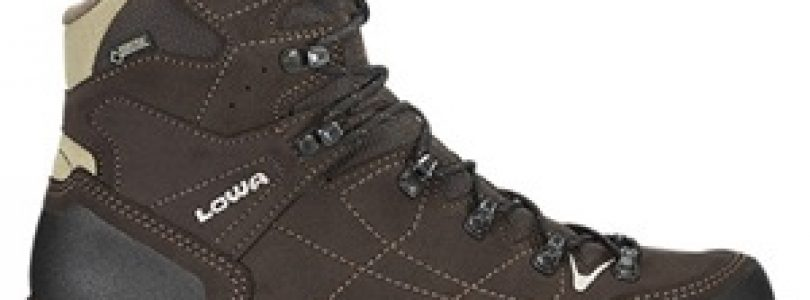 scarpe da trekking Lowa Vantage GTX