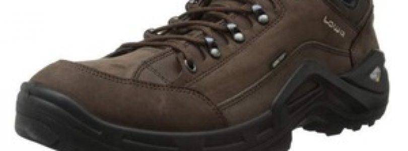 scarpe da trekking Lowa Men's Renegade II GTX ico